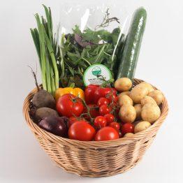 Weetons Salad Box - Small